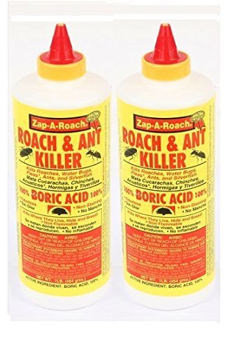 5 Best Boric Acid For Roaches - Pest Survival Guide