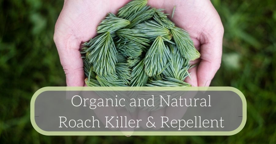 Organic-Natural-Roach-Killer-Repellent