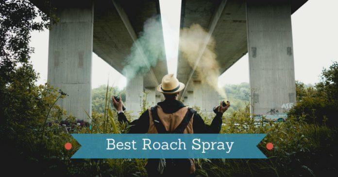 6 Best Roach Spray