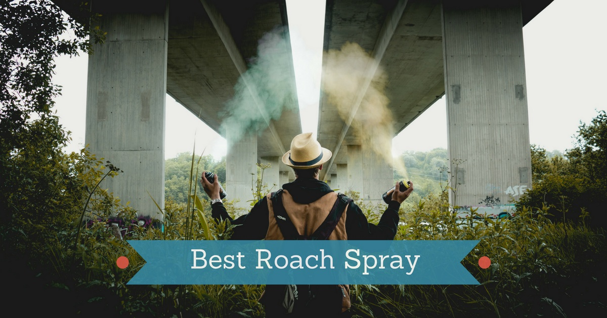 6 Best Roach Spray in 2017 - Pest Survival Guide