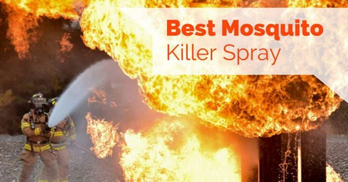 4 Best Mosquito Killer Spray - Pest Survival Guide