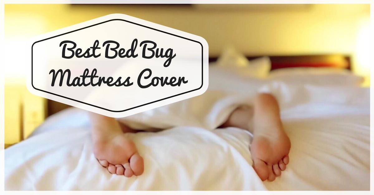 Best Bed Bug Mattress Encasement Cover - Pest Survival Guide