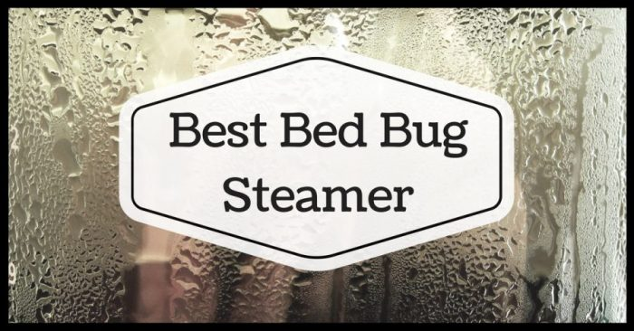 Best Bed Bug Steamer 2019