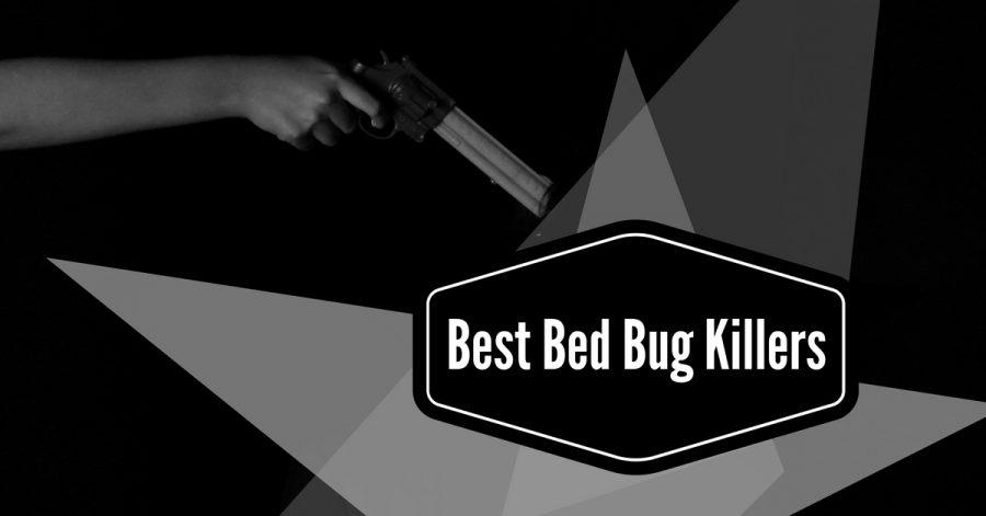 8 Best Bed Bug Killer (2019 Edition)