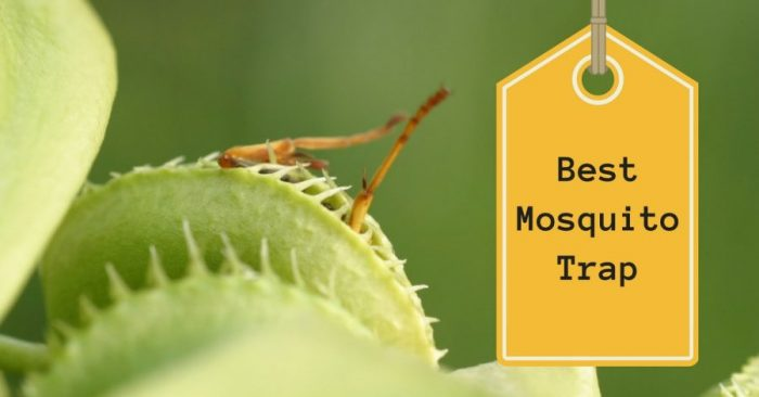 7 Best Mosquito Trap in 2019