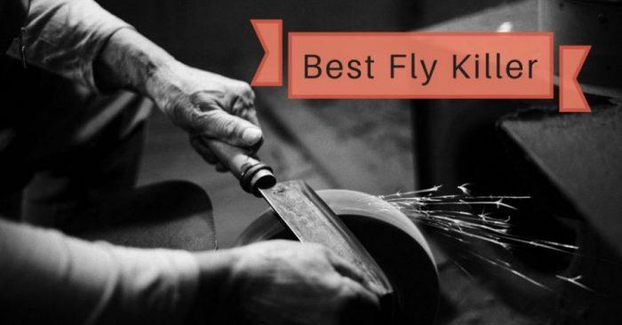 7 Best Fly Killer