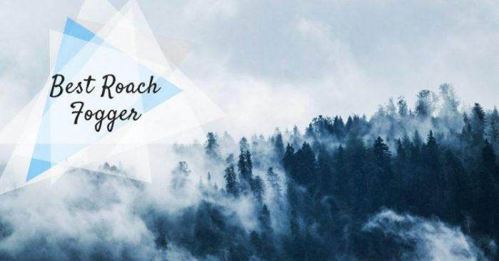 5 Best Roach Fogger & Bomb