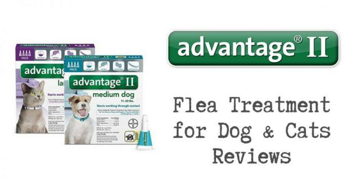 Advantage Flea Treatment Reviews