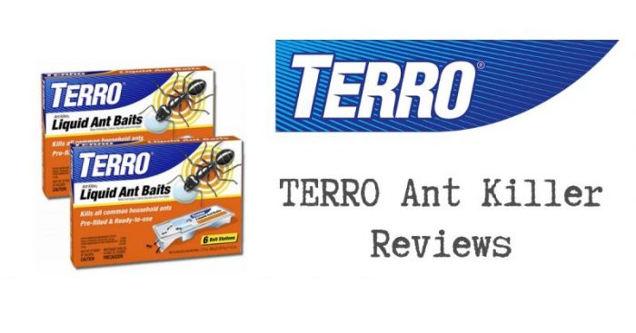 Terro Ant Killer Reviews 2020 Edition Pest Survival Guide