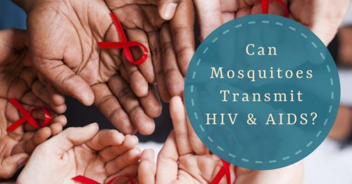 Can Mosquitoes transmit HIV and AIDS?